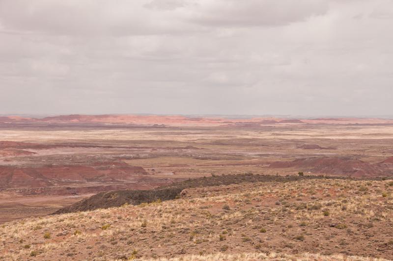 Petrifird Forest, Painted Desert (1 of 5)