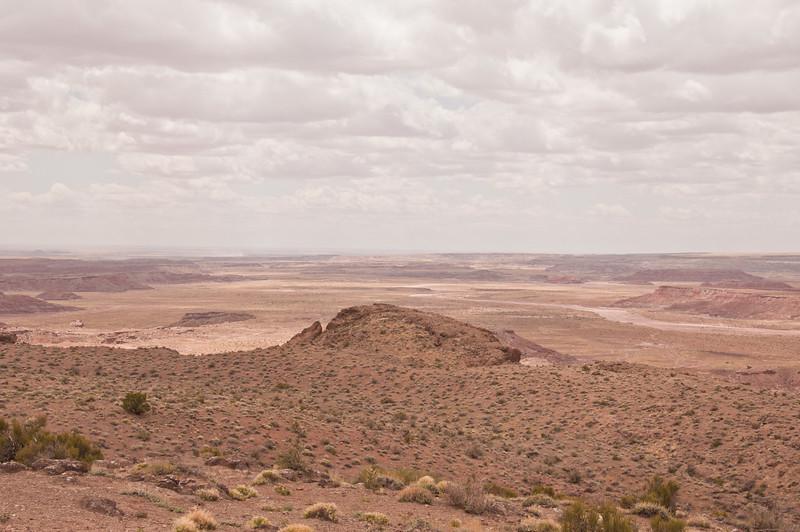 Petrifird Forest, Painted Desert (4 of 5)