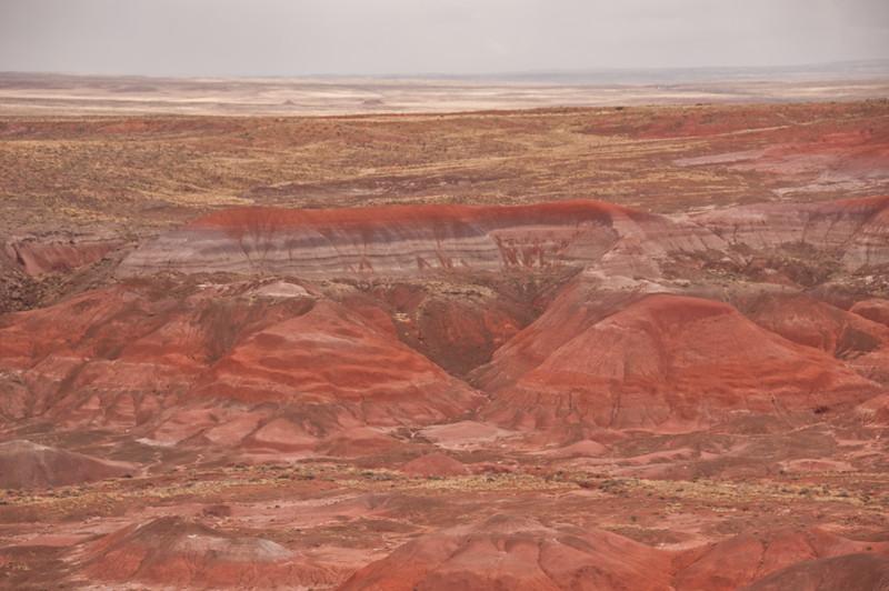 Petrifird Forest, Painted Desert (7 of 8)
