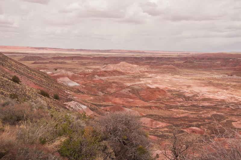 Petrifird Forest, Painted Desert (8 of 8)