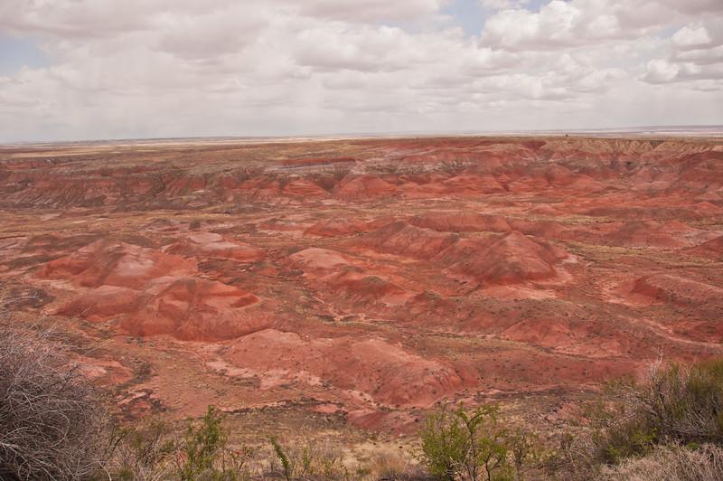 Petrifird Forest, Painted Desert (6 of 8)
