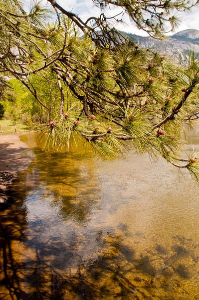 Yosemite (9 of 47)