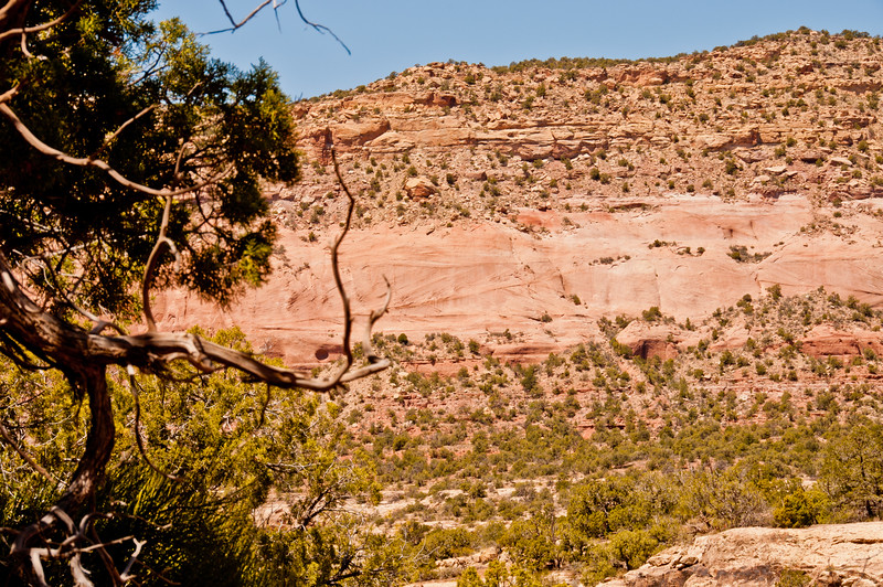 Canyons of the Ancients (4 of 18)