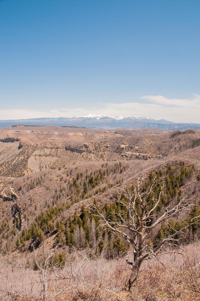 Mesa Verde (2 of 92)