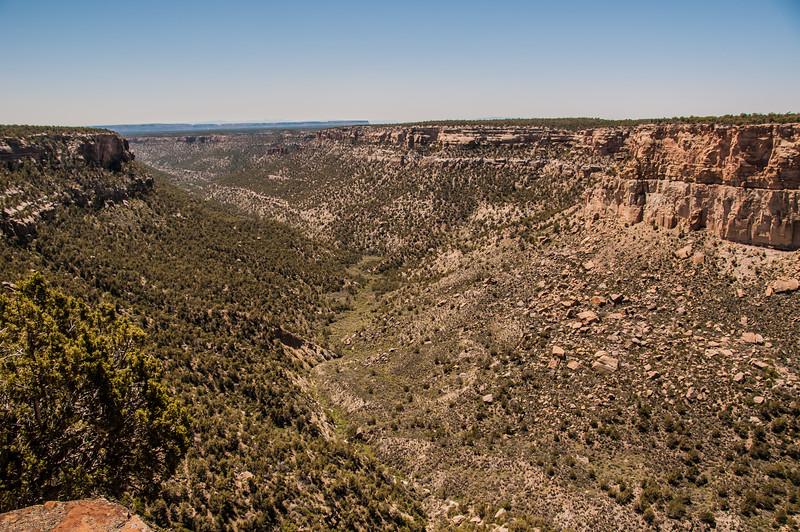 Mesa Verde (17 of 92)