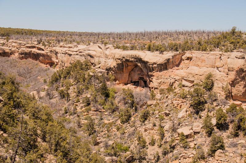 Mesa Verde (23 of 92)