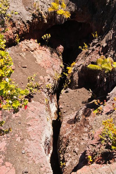 Mauna Ulu (12 of 30)
