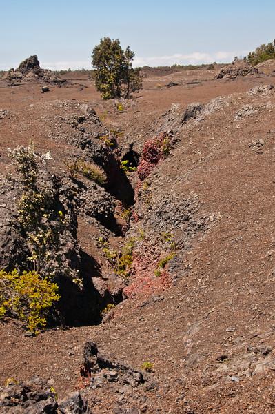 Mauna Ulu (10 of 30)