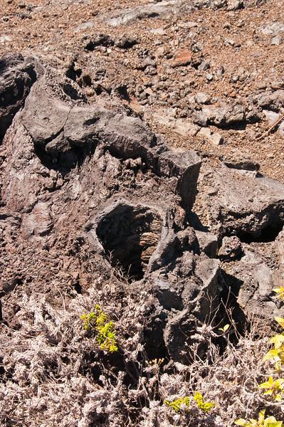 Mauna Ulu (21 of 30)