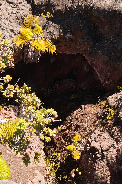Mauna Ulu (13 of 30)