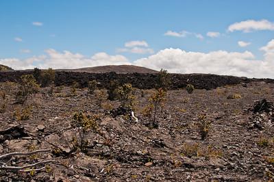 Mauna Ulu (5 of 30)