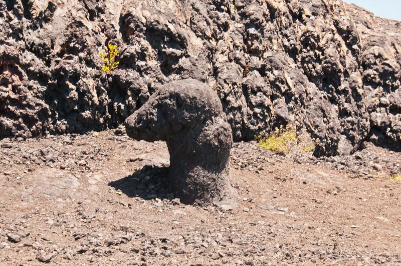 Mauna Ulu (23 of 30)