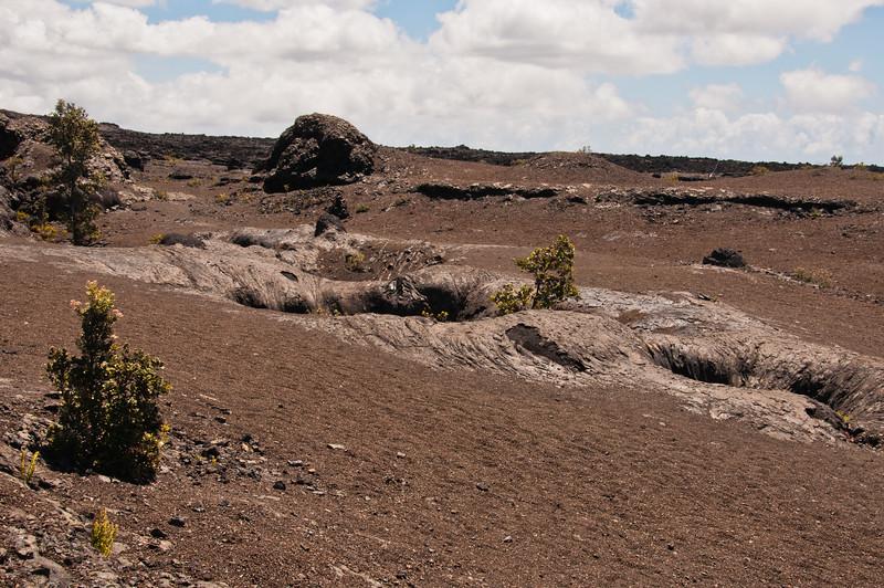 Mauna Ulu (9 of 30)