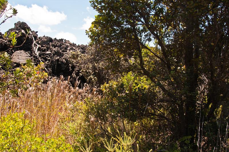Mauna Ulu (29 of 30)