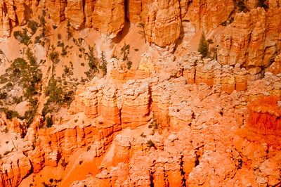 Bryce Canyon (18 of 26)