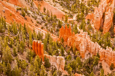 Bryce Canyon (19 of 26)