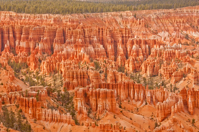 Bryce Canyon (17 of 26)