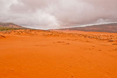 Coral Pink Sand Dunes (3 of 10)