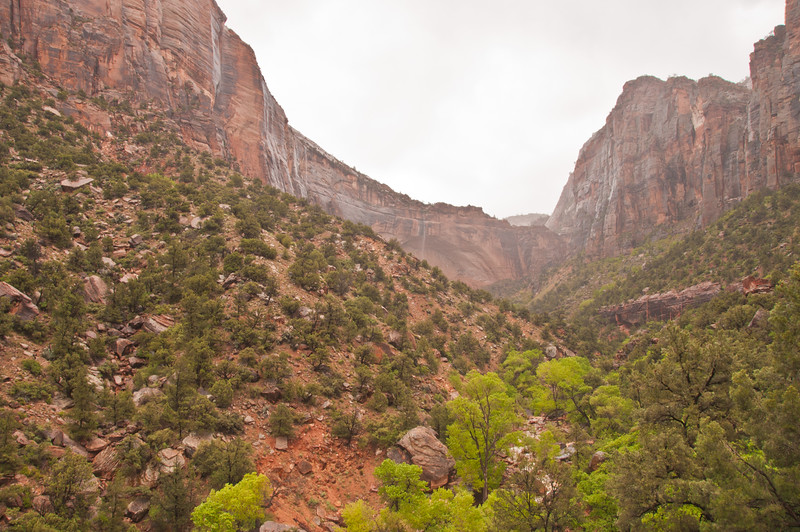 Zion National Park (2 of 23)