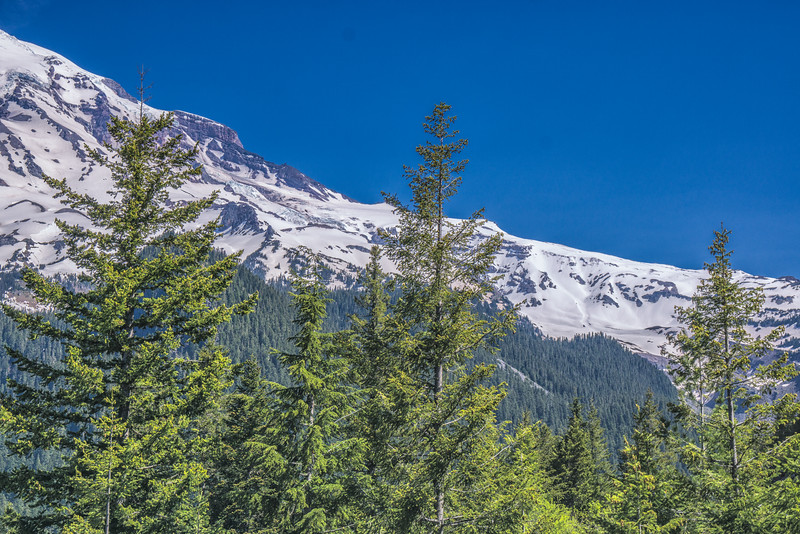 Mt Ranier National Park