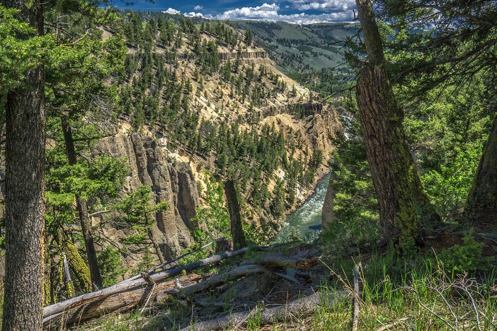Yellowstone National Park  7