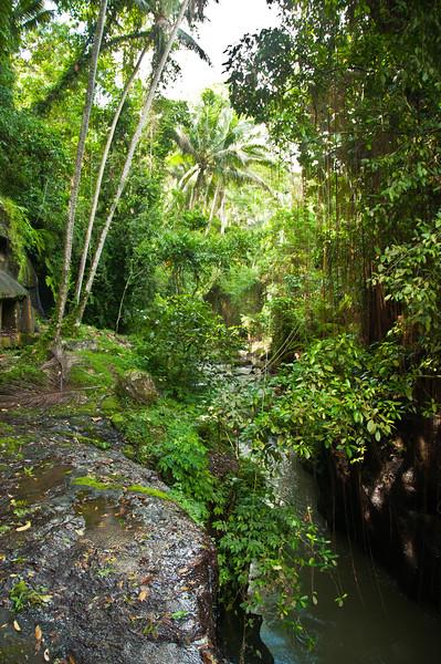 Bali - temple in ravine (8 of 10)