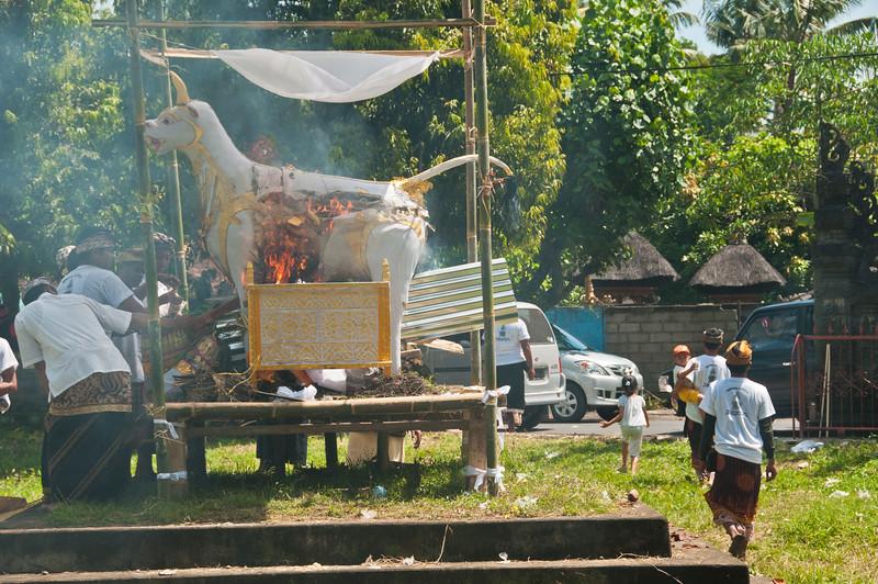 Bali - Cremation (38 of 40)