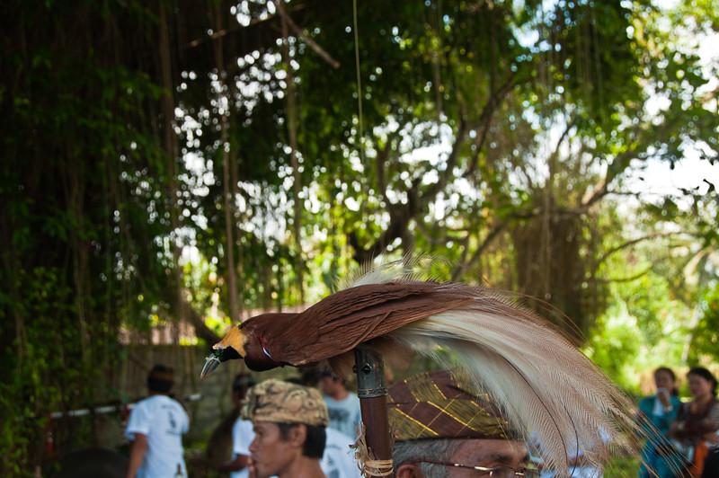 Bali - Cremation (33 of 40)