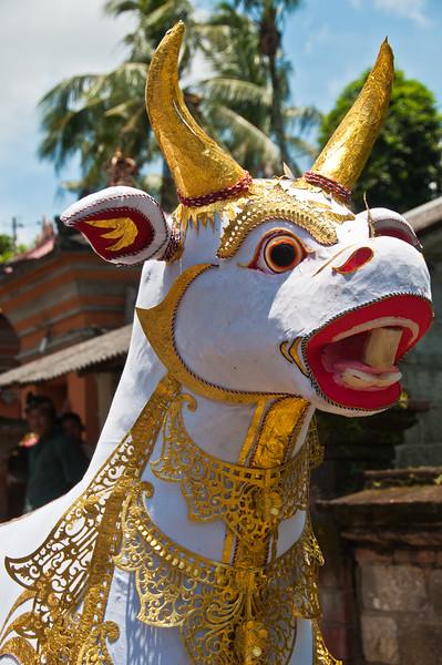 Bali - Cremation (5 of 40)