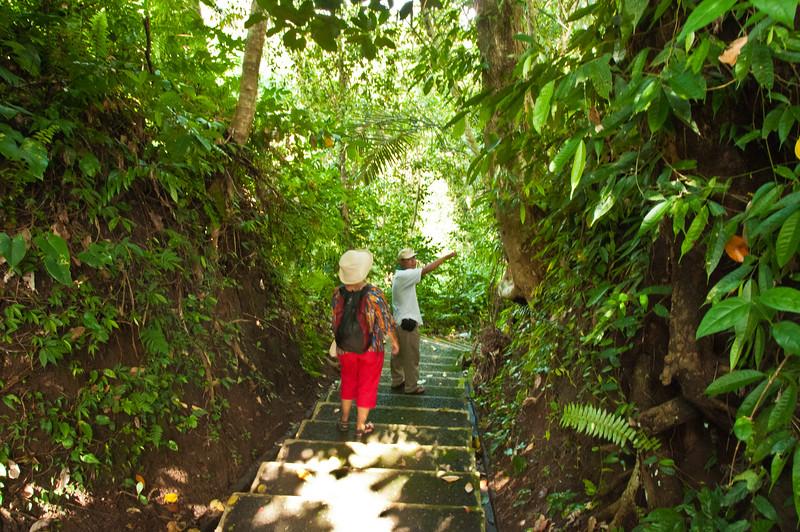 Bali - paddy field walk (30 of 31)