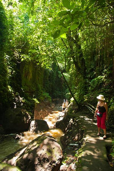Bali - Ubud walk (12 of 31)