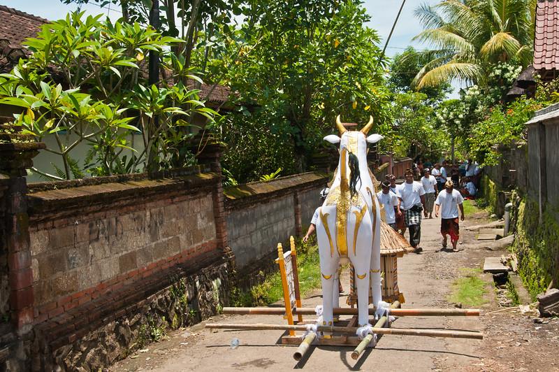 Bali - Cremation (2 of 40)