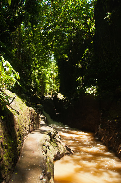 Bali - Ubud walk (11 of 31)