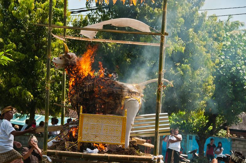 Bali - Cremation (40 of 40)