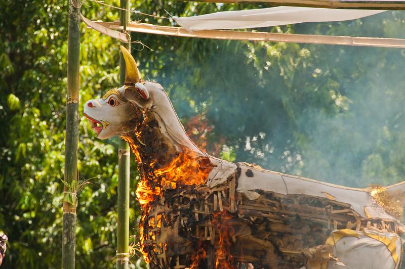 Bali - Cremation (39 of 40)