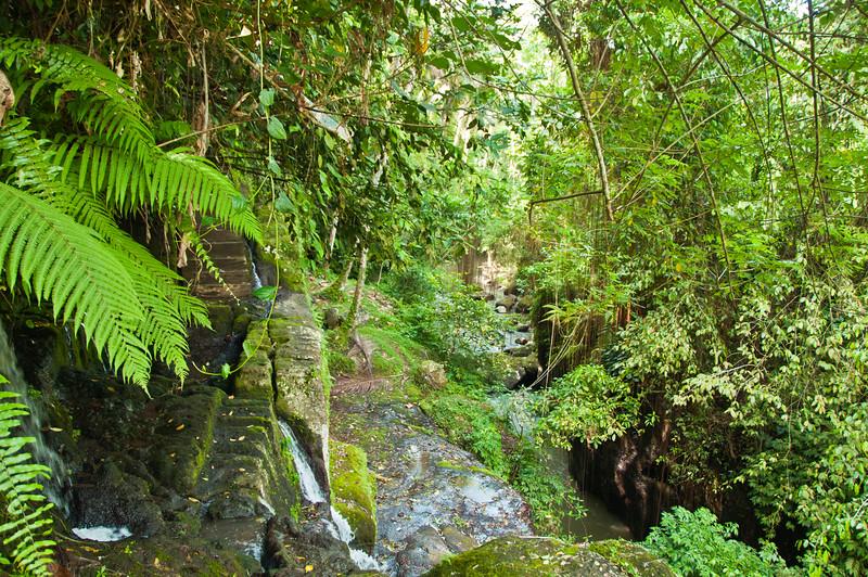 Bali - temple in ravine (3 of 10)