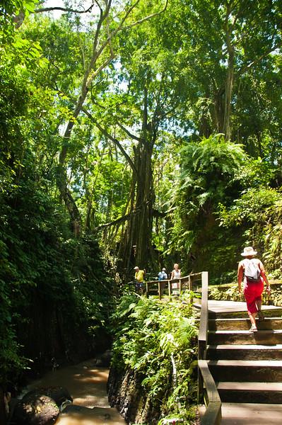 Bali - Ubud walk (13 of 31)