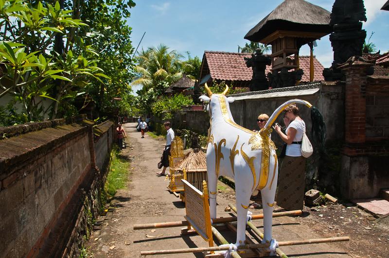 Bali - Cremation (4 of 40)