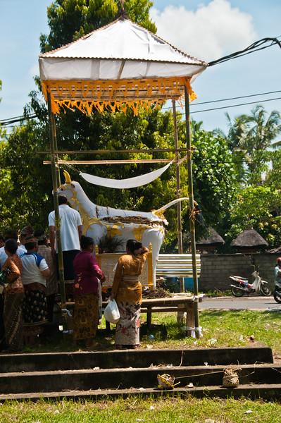 Bali - Cremation (37 of 40)