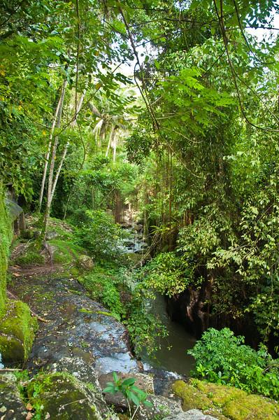 Bali - temple in ravine (5 of 10)