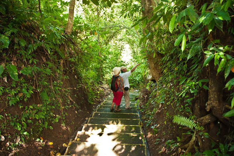 Bali - paddy field walk (31 of 31)