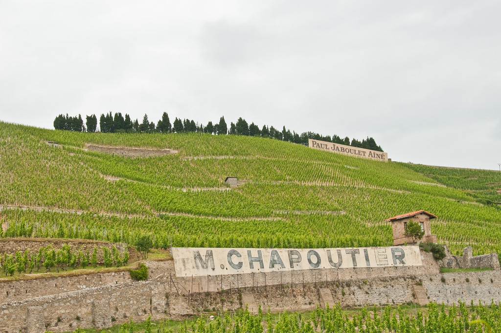 Chapoutier, Hermitage-2