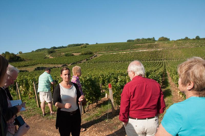 Charles Hastings Wine Club - Beaujolais 2012-31