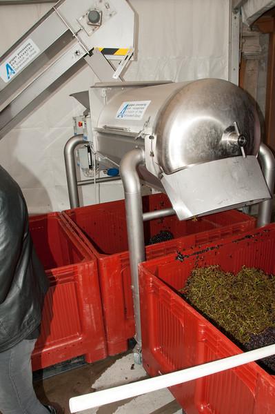 Charles Hastings Wine Club - Beaujolais 2012-7