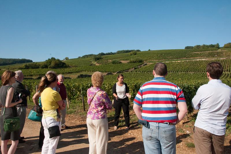 Charles Hastings Wine Club - Beaujolais 2012-32