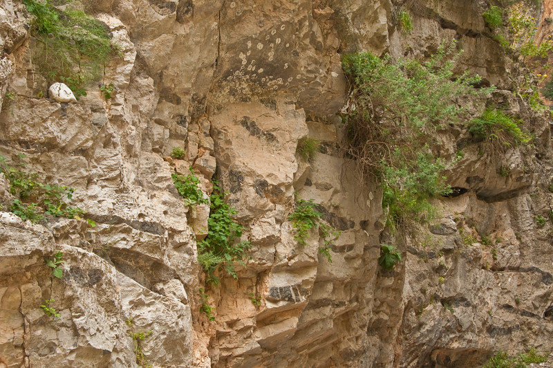 2010-April-25-Imbros Gorge-52
