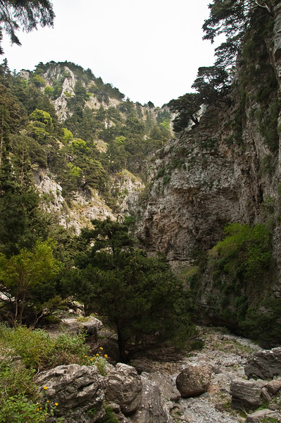 2010-April-25-Imbros Gorge-42