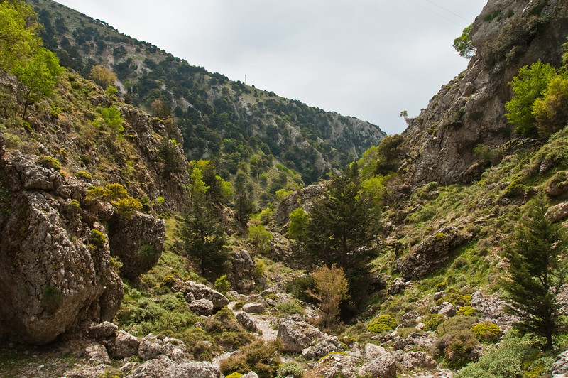 2010-April-25-Imbros Gorge-8