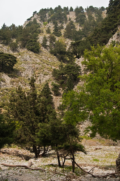 2010-April-25-Imbros Gorge-55