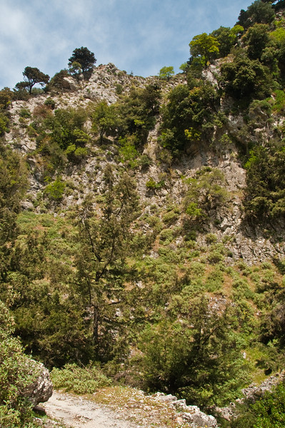 2010-April-25-Imbros Gorge-27